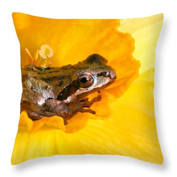 Frog And Daffodil Throw Pillow by Jean Noren
