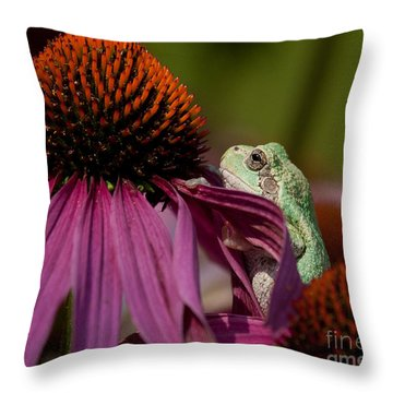 Frog And His Cone Throw Pillow