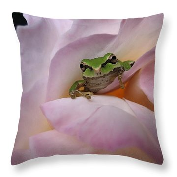 Frog And Rose Photo 1 Throw Pillow by Cheryl Hoyle