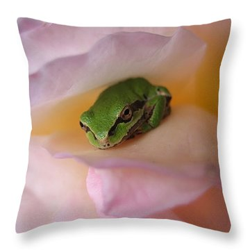 Frog And Rose Photo 2 Throw Pillow by Cheryl Hoyle