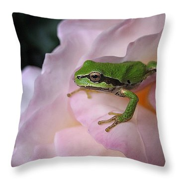 Frog And Rose Photo 3 Throw Pillow by Cheryl Hoyle