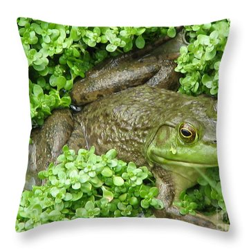 Frog Throw Pillow by DejaVu Designs