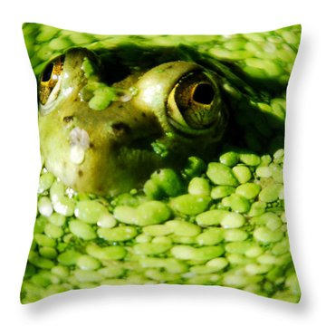 Frog Eye's Throw Pillow by Optical Playground By MP Ray