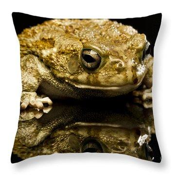 Frog Throw Pillow by Gunnar Orn Arnason