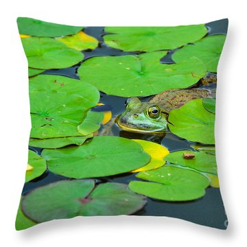 Frog In A Pond Throw Pillow by Lisa L Silva