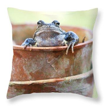 Flowerpot Throw Pillows