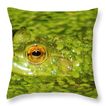 Frog In Single Celled Algae Throw Pillow by Optical Playground By MP Ray
