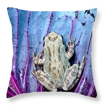 Frog On Cabbage Throw Pillow by Jean Noren