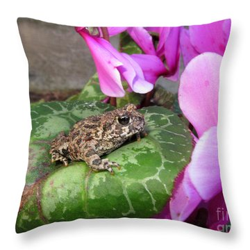Frog On Cyclamen Plant Throw Pillow by Debra Thompson