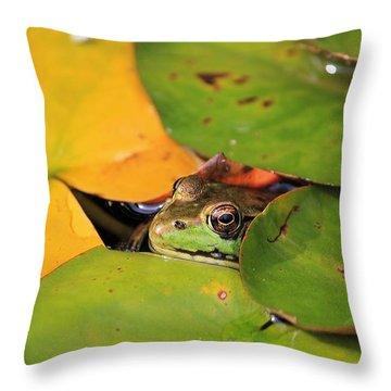 Frog Pond 3 Throw Pillow