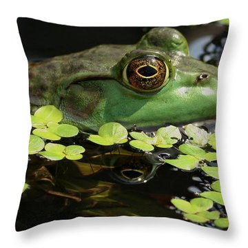 Frog Reflection Throw Pillow by Barbara S Nickerson