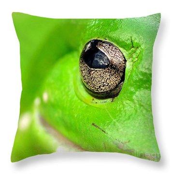 Frog's Eye Throw Pillow by Kaye Menner