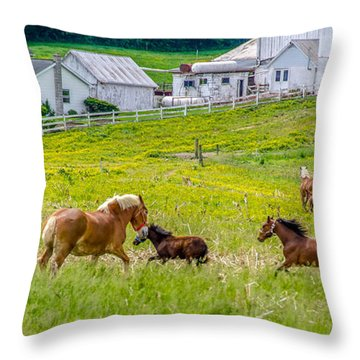 Frolicking Throw Pillow by Guy Whiteley
