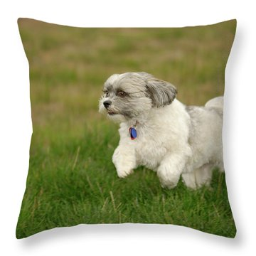 Frollic Throw Pillow