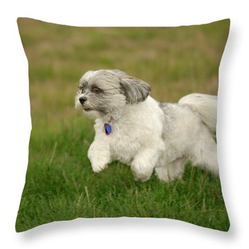 Frollic Throw Pillow by Arthur Fix