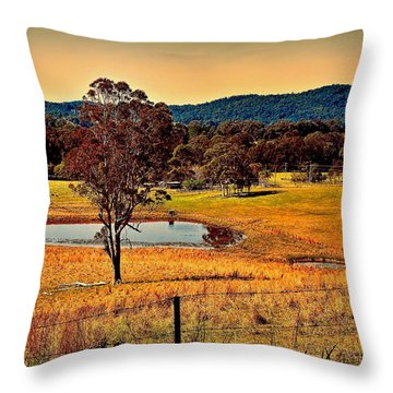 Throw Pillow featuring the photograph From A Distance by Wallaroo Images