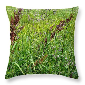 From A Soldier's Perspective 1 Throw Pillow by Alys Caviness-Gober