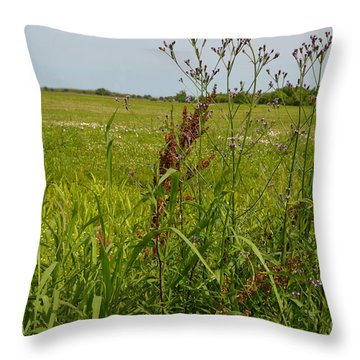 From A Soldier's Perspective Throw Pillow by Alys Caviness-Gober