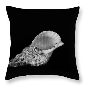 From Another Place Throw Pillow by Randi Grace Nilsberg