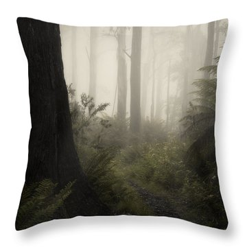 From Darkness Throw Pillow by Amy Weiss