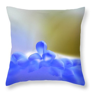 From Heaven Throw Pillow
