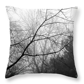 Throw Pillow featuring the photograph From Hence We Come by Robyn King