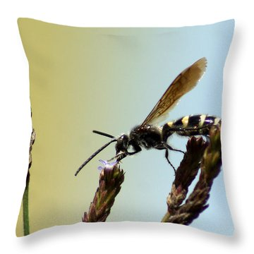 From Here To There Throw Pillow by Kim Pate