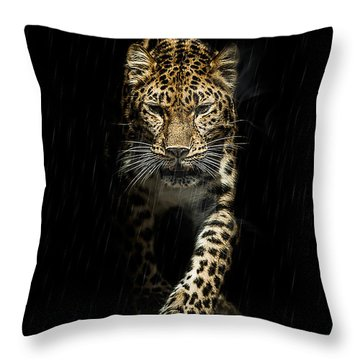 From Out Of The Darkness Throw Pillow