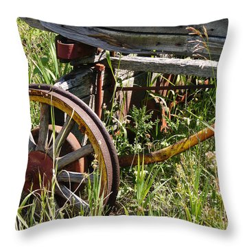 From Rust To Grass Throw Pillow