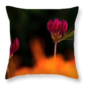 From The Fire Throw Pillow
