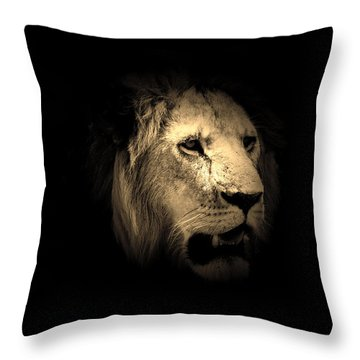 From The Shadows  Throw Pillow by Aidan Moran