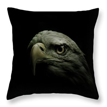 From The Shadows Throw Pillow by Shane Holsclaw