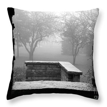 From The Window Throw Pillow by Susan  Dimitrakopoulos
