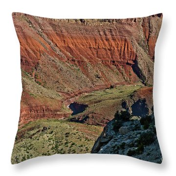 Throw Pillow featuring the photograph From Yaki Point 5 Grand Canyon by Bob and Nadine Johnston