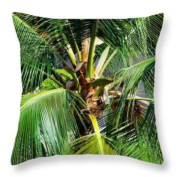 Fronds And Center Throw Pillow