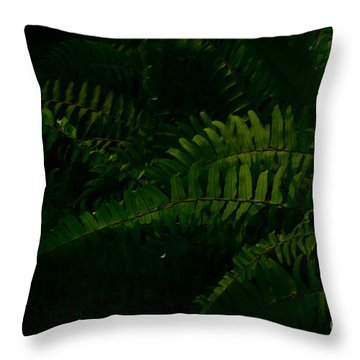 Fronds And Sun Throw Pillow by Tim Good