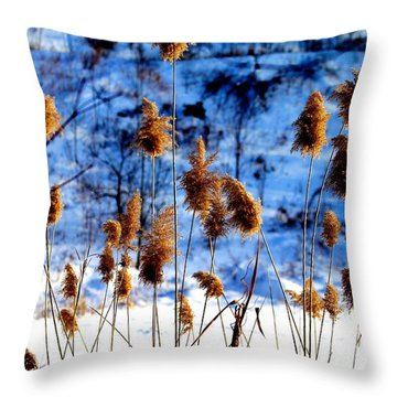Throw Pillow featuring the photograph Fronds In Winter by Eleanor Abramson