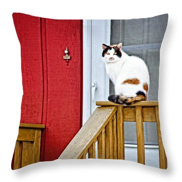 Front Porch Cat Throw Pillow