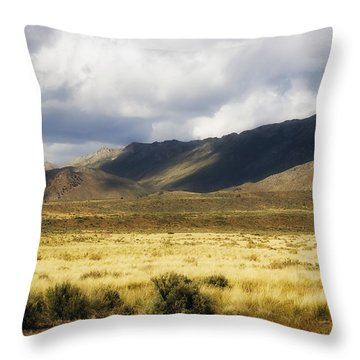 Frontier Throw Pillow