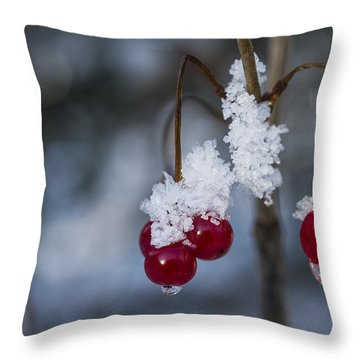 Frost Berries Throw Pillow