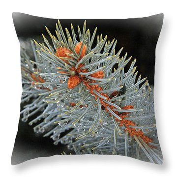 Frost Drops Throw Pillow by Bob Hislop