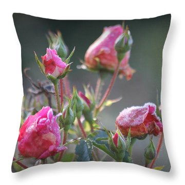 Frost Kissed Roses Throw Pillow