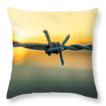 Frost On Barbed Wire At Sunrise Throw Pillow by Michael Cross