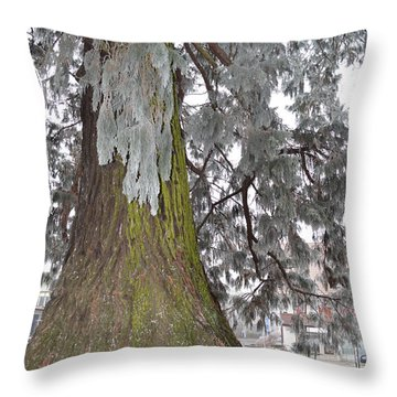 Throw Pillow featuring the photograph Frost On The Leaves by Felicia Tica