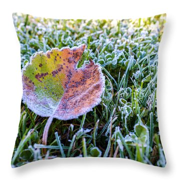 Frostbite Throw Pillow