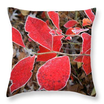 Frosted Blueberry Leaves Throw Pillow by William Tanneberger