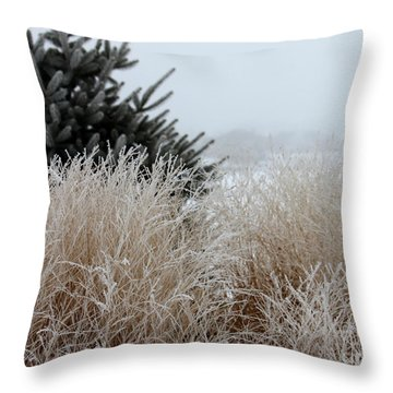 Frosted Grasses Throw Pillow by Debbie Hart