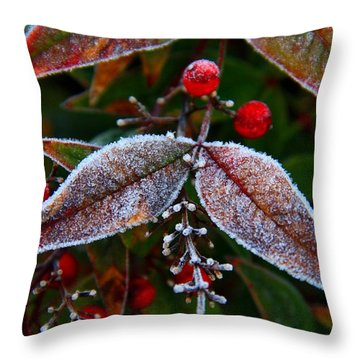 Frosted Nandina Leaves Throw Pillow by Kathryn Meyer