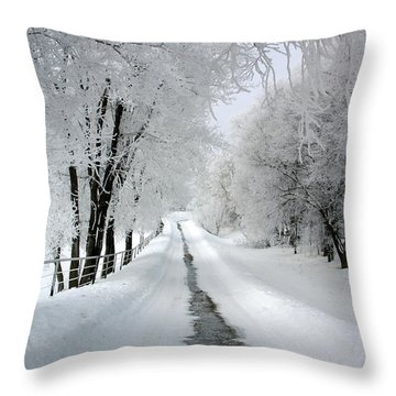 The Long Frosted Road Throw Pillow