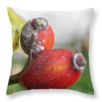 Throw Pillow featuring the photograph Frosted Rosehips by Nina Silver